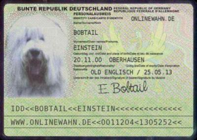 Kontakt zu Bobtail Einstein
