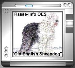 Rasse Info OES