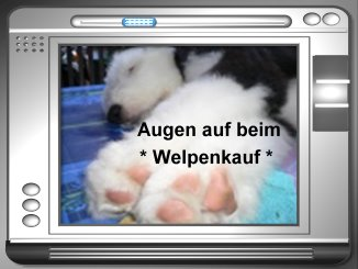 Welpenleitfaden als Pdf-Datei: Verfasser Uwe Loehle, copyright: www. bobtailliebhaber.de